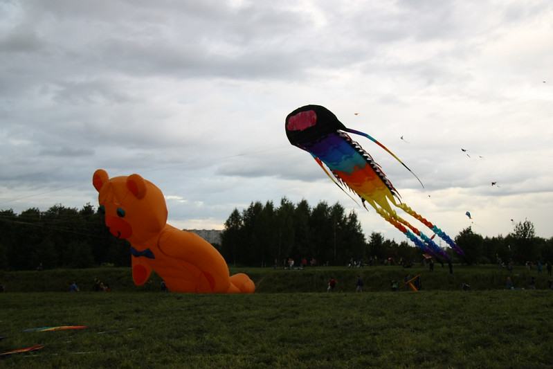 Kites in park Tsaritsyno