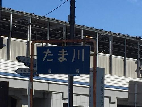 聖地巡礼 多摩川レコード ジャケ写場所
