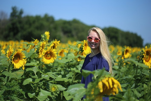 Sunflowers, flower children and drone photography