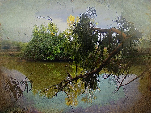 Sorraia River