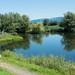 Schleienloch Pond, Hard, Vorarlberg, Austria