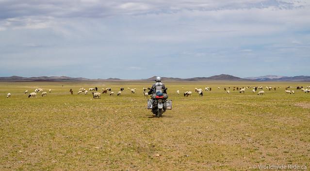 Mongolia Khovd to Ulaangom_-13