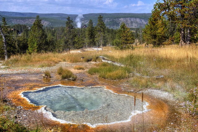 Secluded view of Old Faithful