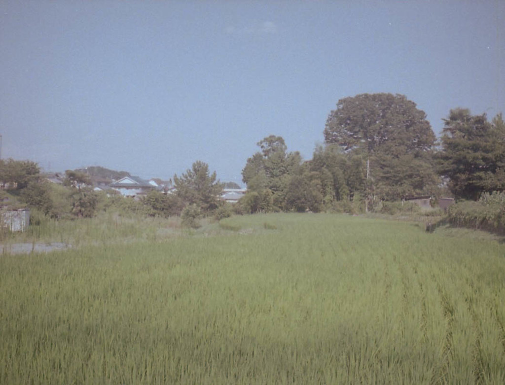 color-19828-2.jpg
