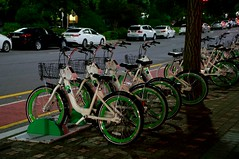 Seoul City Bikes