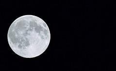 blue moon 20150530