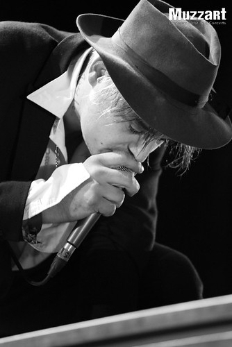 Climax - Peter Doherty - 4678