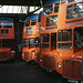 Strathtay RM's in Perth garage - newly arrived . Oct'86. by David Christie 14