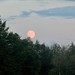 Full Moon Rising - Sturgeon Moon - Green Corn Moon in Aquarius by Trish P. - K1000 Gal