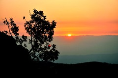 #denneyeh #lebanon #tripoli #trilolilib #tripolis #sunset #orange #sky #bnw