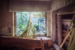 Villa des unordentlichen Psychiaters