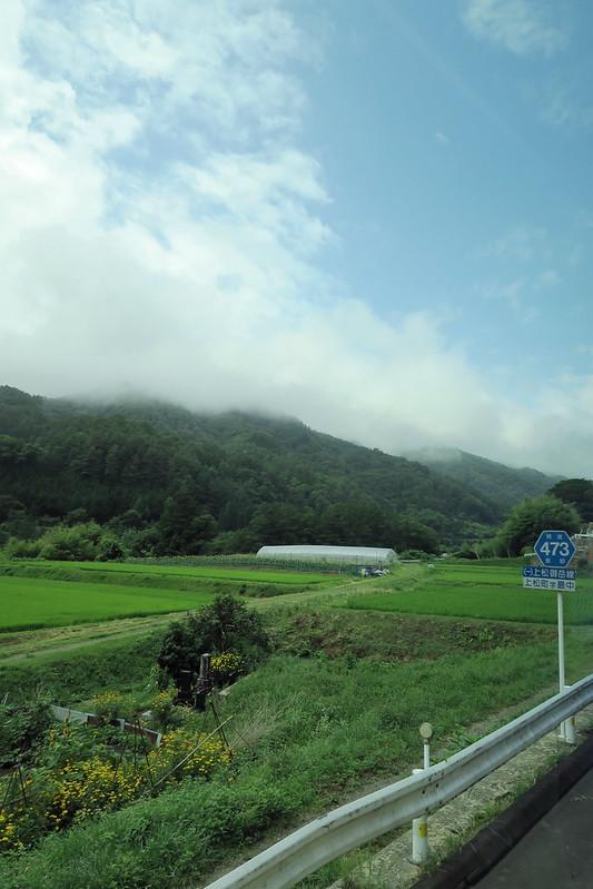 赤沢自然休養林〜20170730