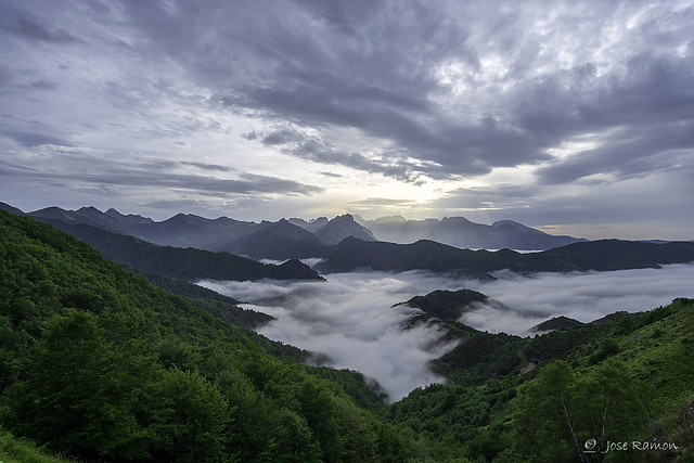 Bosque de Valgrande-Parque natural, Nikon D800, Sigma 20-40mm F2.8