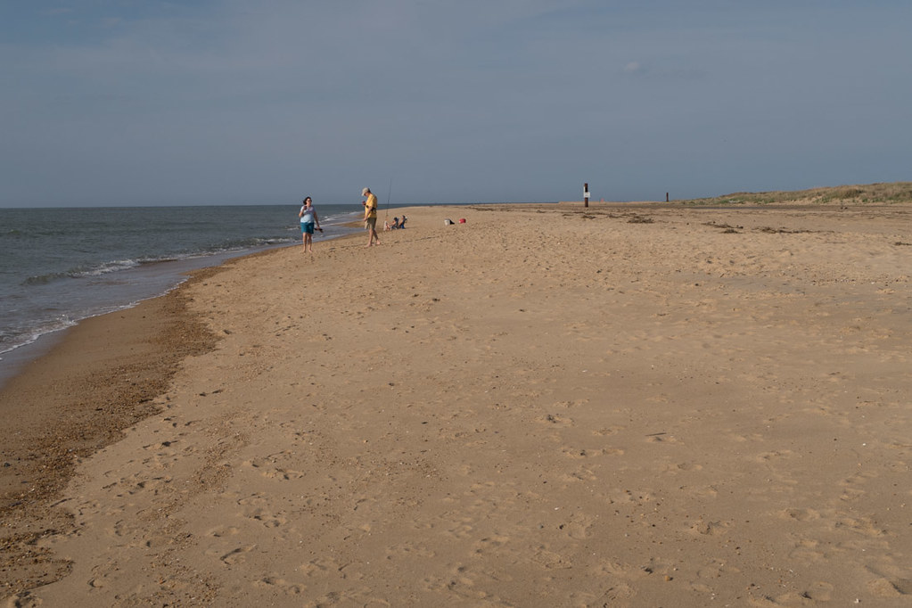 Beach at First Landing State Park | Campground Review
