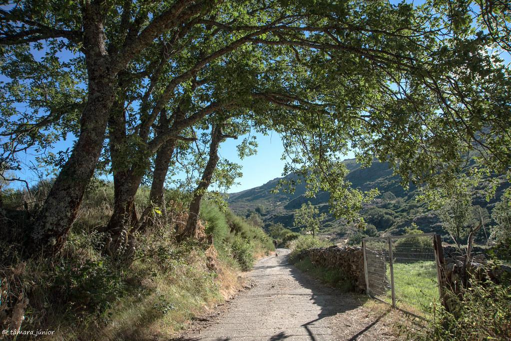 2017.- Caminhada Porto de Sanábria-Peña Trevinca-Porto de Sanábria (21)