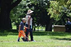 Family, Queen's Park