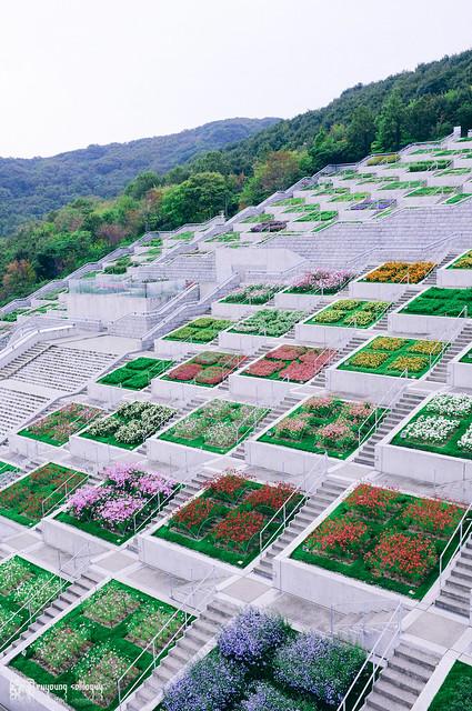十年,京都四季 | 卷五 | 京都與我,有時還有關西 | 32