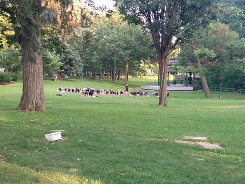 Yoga in the park #toronto #beaches #kewgardens #parks #yoga #latergrams