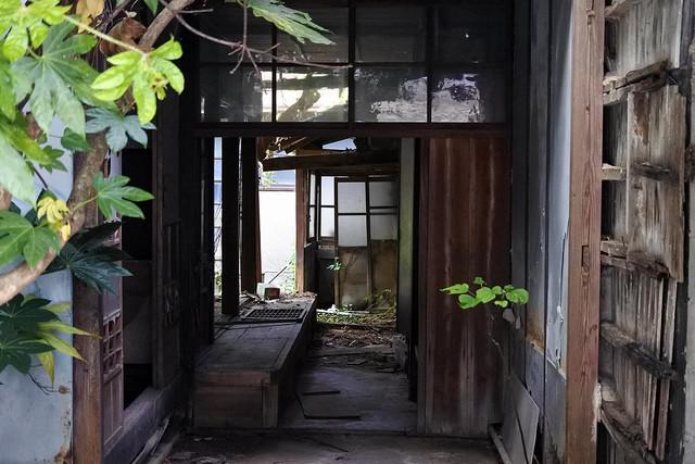 ギンザヤ隣家, Nikon 1 J5, 1 NIKKOR VR 30-110mm f/3.8-5.6