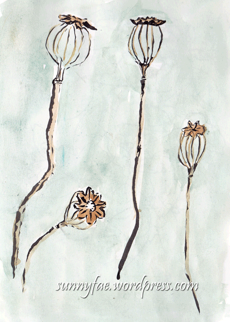 skeleton seedheads sketch & watercolour