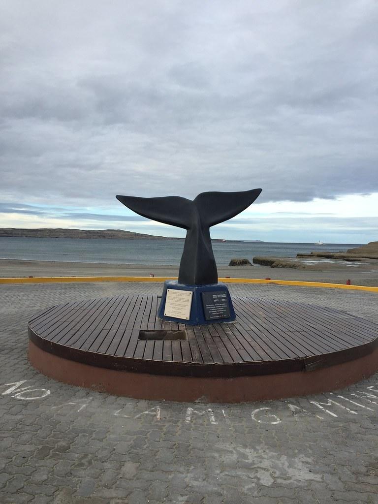 Día 2 - Puerto Madryn