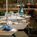 Dunure Harbour - Yachts-1 by just ttopix ;o))