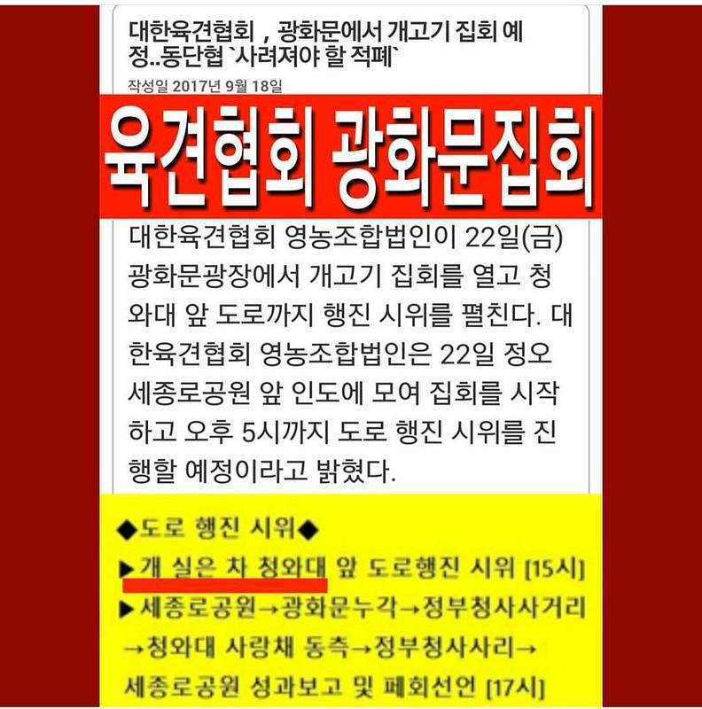 Korean Dog Farmers Association Demo 092217 (3)
