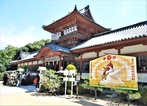 jp-matsuyama-Isaniwa-sanctuaire (11)