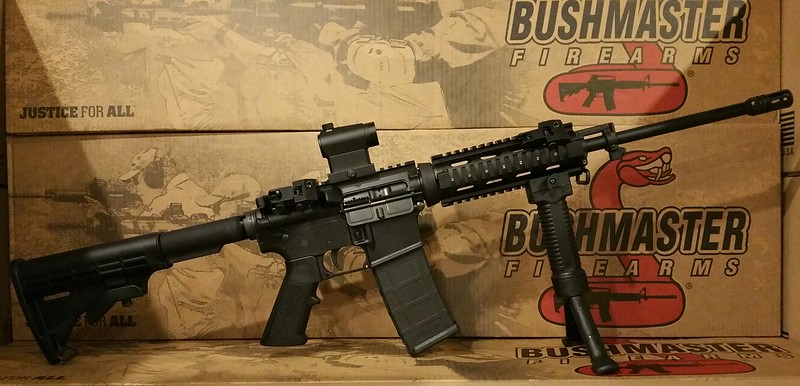 Bushmaster with Red Dot & 45 Degree Sights WWW.USAFIREARMS.COM