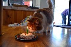 36:52 - birthday