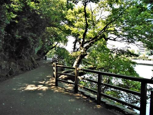 jp-tokushima-am (6)