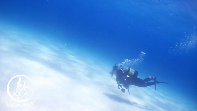 砂地の上を泳ぐダイバー