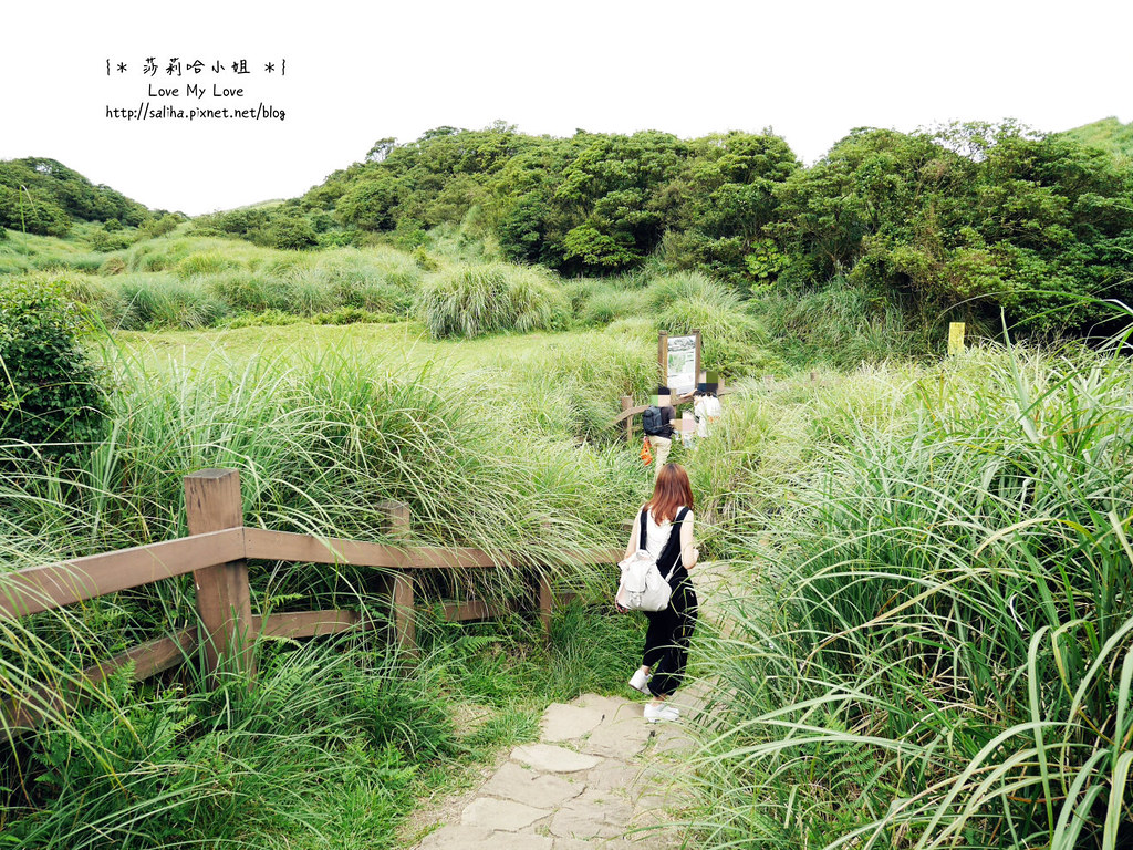 陽明山一日遊景點推薦絹絲瀑布步道 (20)