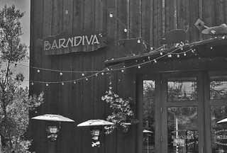 Barndiva - Sign bw