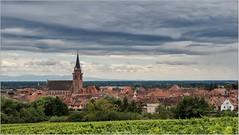 Bergheim - Alsace  ( Haut-Rhin )