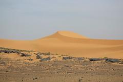 Morocco:  Erg Chebbi (Sahara Desert)