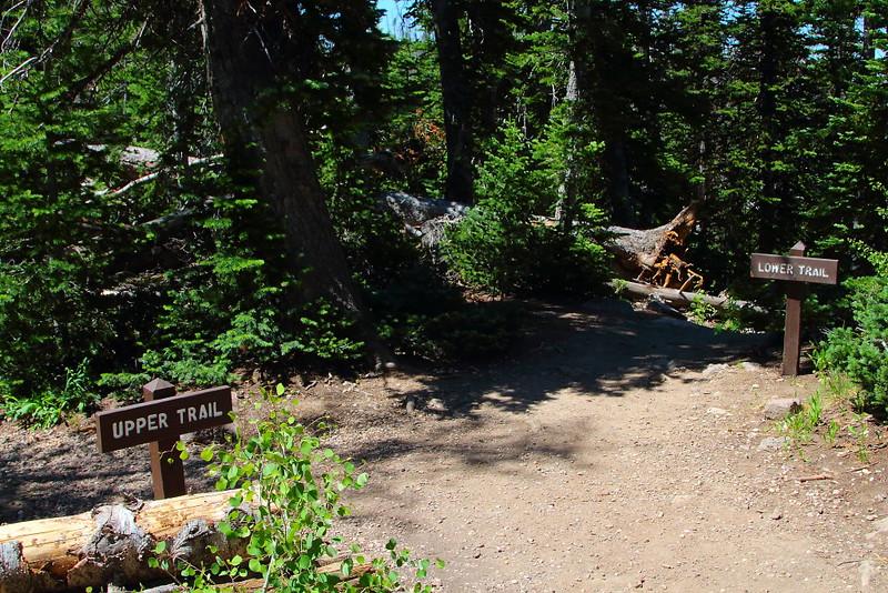 IMG_4888 Alpine Pond Trail