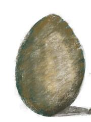 2016.10.04 Egg Volume Study