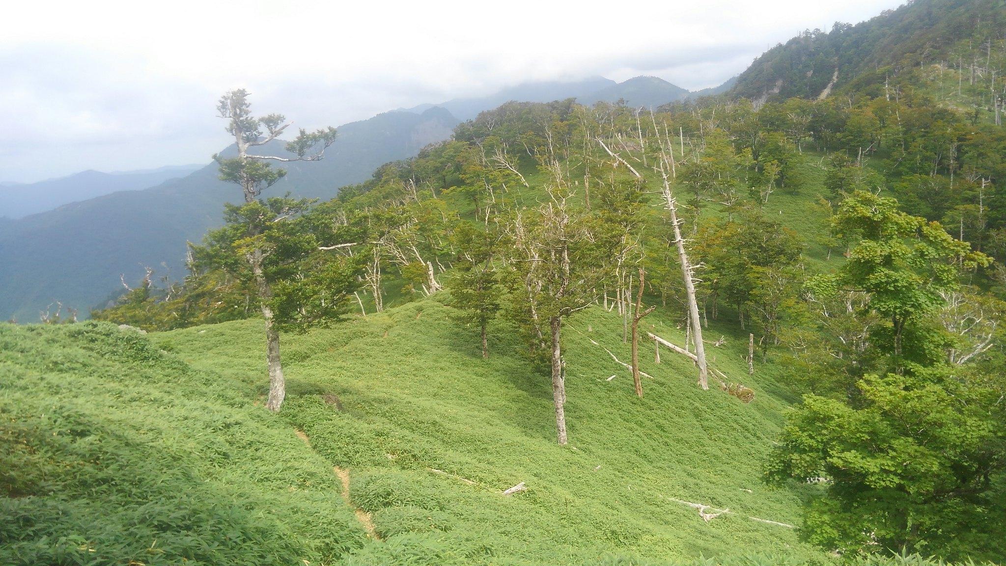 Mt. Shakagatake