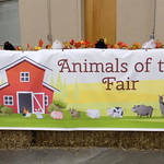 Animals Of The Fair Sign.