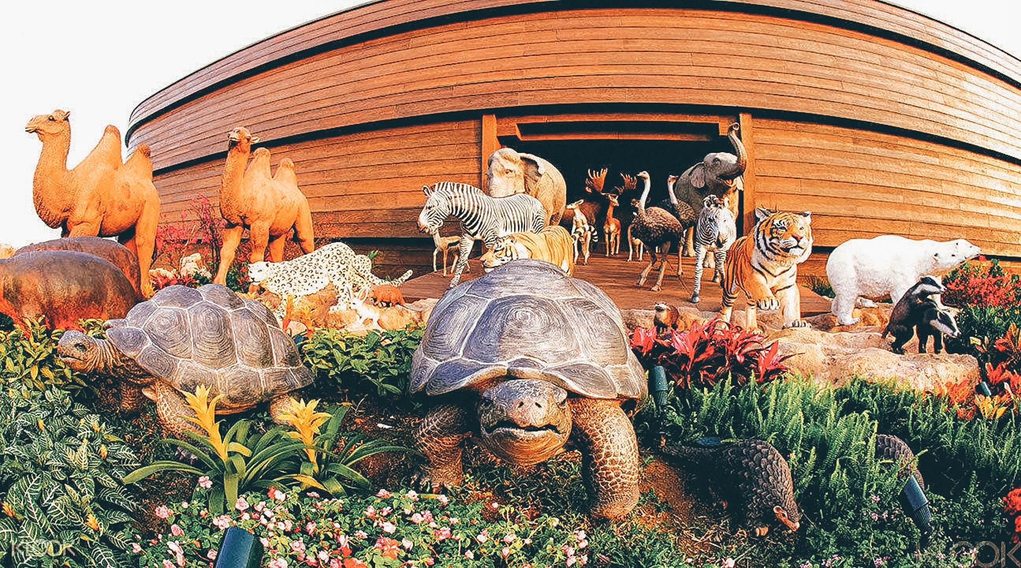 hongkong noah's ark