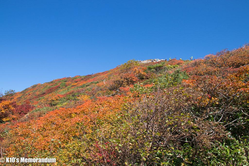 IMG_9842仙丈ヶ岳