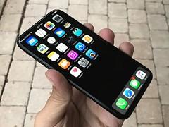 'iPhone X' confirmed in alleged leak