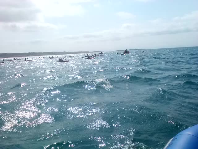 Nadando por los migrantes