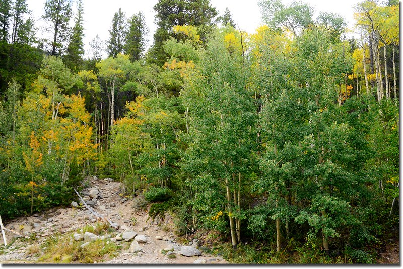 Denny Creek Trailhead 1