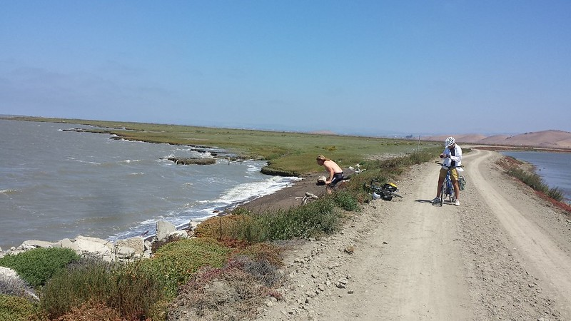 Stopping for a quick dip in the salt flats, Coyote Hills Park