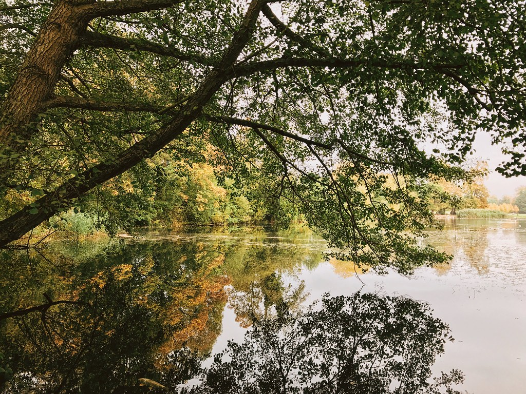 12 Reasons Why Autumn Is The Best Season | Hannah and The Blog