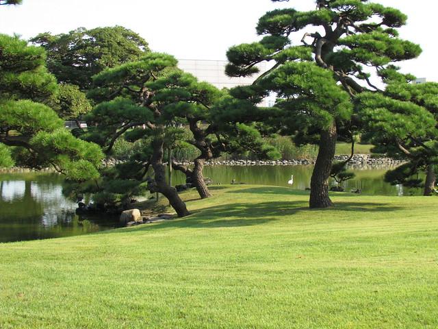 Walking in Hama Rikyu Gardens – Second Home of Shogun | walking ...