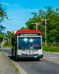 HERE COMES AN EVERETT TRANSIT LOW FLOOR BRT HYBRID