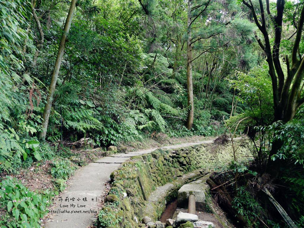 陽明山一日遊景點推薦絹絲瀑布步道 (6)